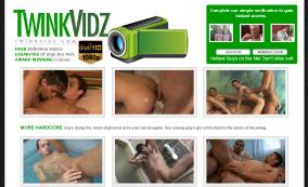 TwinkVidz